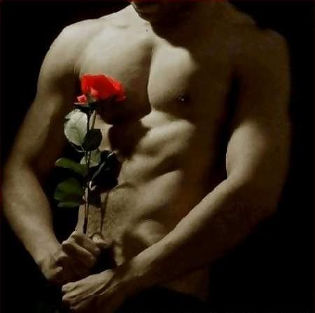 đàn ông gợi tình, sexy, bông hồng, tình yêu